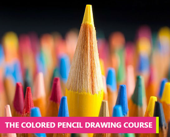 The Colored Pencil Drawing Course Beginner To Advanced